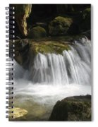 Forest Stream 2a Spiral Notebook