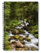 Forest Stream In Tatra Mountains Spiral Notebook