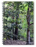 Forest Trees Spiral Notebook
