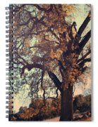 Forevermore Spiral Notebook
