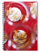 Formosan Subterranean Termites Spiral Notebook