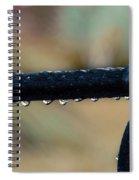 Fort Pierce Morning Dew Spiral Notebook