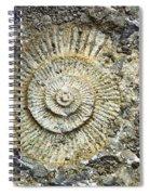 Fossil Geology Spiral Notebook