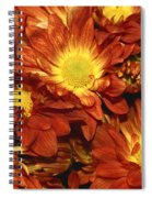 Foulee De Petales - Original Spiral Notebook