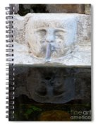 Fountain Face Spiral Notebook