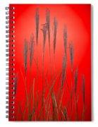 Fountain Grass In Red Spiral Notebook
