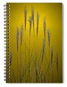 Fountain Grass In Yellow Spiral Notebook