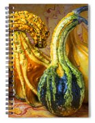 Four Gourds Spiral Notebook