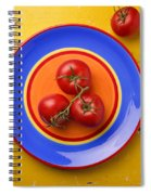 Four Tomatoes  Spiral Notebook