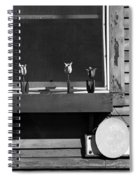 Four Tulips Cafe Bw Spiral Notebook