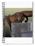 Fox On A Pedestal Spiral Notebook