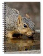 Fox Squirrel Spiral Notebook