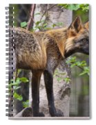 Foxy Lady Spiral Notebook