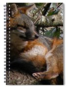 Foxy's Naptime Spiral Notebook