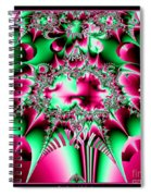 Fractal 12 Candycane Jester Spiral Notebook