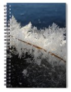 Fractal Frosty Ice Crystals Spiral Notebook