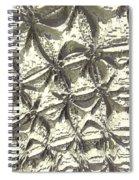 Fractal Wall Spiral Notebook