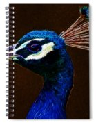 Fractalius Peacock Spiral Notebook
