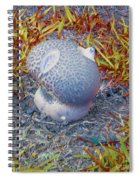 Fraggle Rock Spiral Notebook