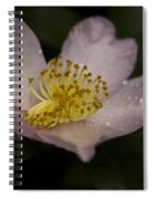 Fragrant Beauty Spiral Notebook