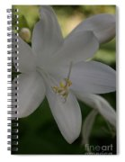 Fragrant Plaintain Lily Spiral Notebook