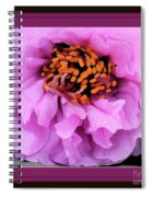 Framed In Purple - Abstract Floral Spiral Notebook