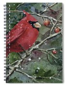 Franci's Cardinal Spiral Notebook