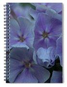 Franz Schubert Phlox Spiral Notebook