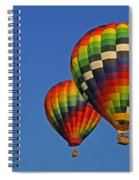 Fraternal Twin Balloons Spiral Notebook