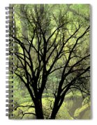 Freaky Tree 2 Spiral Notebook