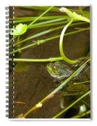 Freddy Spiral Notebook