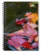 Free Flowing Spiral Notebook