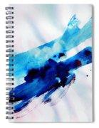 Freedom Flight Spiral Notebook
