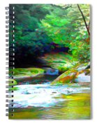 French Broad River Filtered Spiral Notebook
