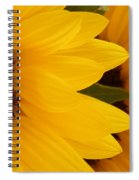 French Sunflowers Spiral Notebook