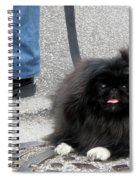Frenchman And His Dog Spiral Notebook