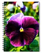 Fresh Face Pansy Spiral Notebook