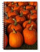 Fresh From The Farm Orange Pumpkins Spiral Notebook