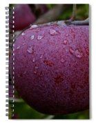 Fresh Red And Ready Spiral Notebook