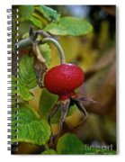 Fresh Rose Hip Spiral Notebook