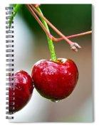 Fresh Wet Cherries Spiral Notebook
