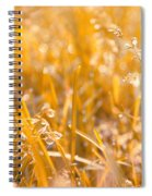 Freshness Spiral Notebook