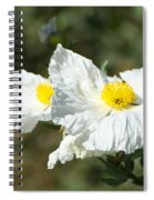 Fried Egg Flowers Spiral Notebook
