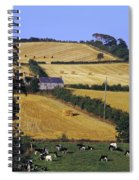 Friesian Cattle Spiral Notebook