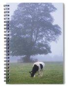 Friesian Cow, Ireland Spiral Notebook