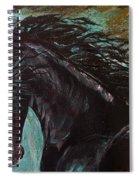 Friesian Frolic Series 3 Spiral Notebook