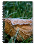 Fringed In Frost Spiral Notebook