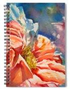 Frizzy Spiral Notebook