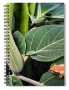 Frog And Moonflower Spiral Notebook