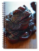 Frog And Rooster Spiral Notebook